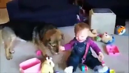 Baby Laughing, Babies and Funny Kids Video