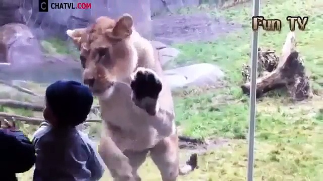 Funny Kids and animals Videos Compilation 2015 [NEW HD]